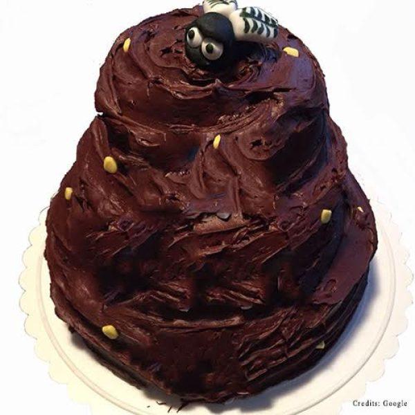Poop fly Cake pune