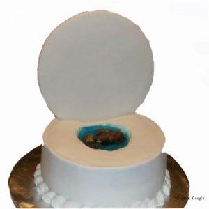 Toilet Poop Cake pune